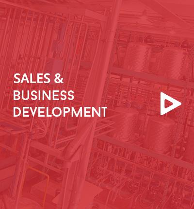 Oil & Gas Business Development Consultant<br />